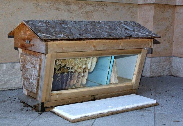 Prosklený úl je umístěný na balkoně Národního divadla směrem na piazzetu.