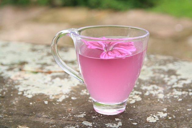 Hojivý slézový čaj má růžovou barvu a příjemnou chuť