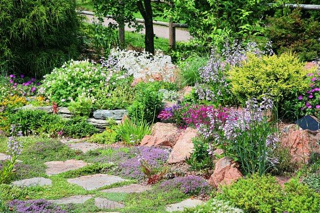 Kvetoucí dlažba může být atraktivním prvkem okrasné zahrady.