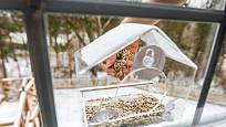 Speciální krmítko můžeme připevnit i k okennímu sklu. I zde budou ptáci v bezpečí.