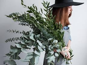 Eukalyptus je vhodný i pro astmatiky.