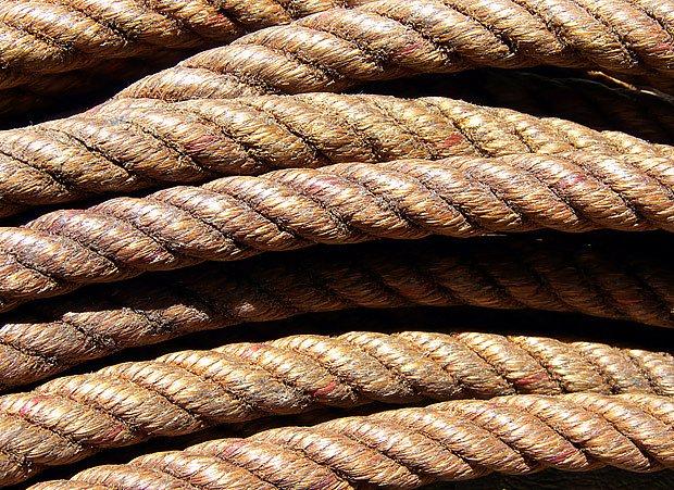provaz vyrobený z banánovníku Musa textilis