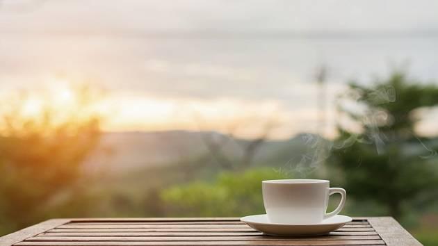 Káva v kombinaci s bazalkou odpuzuje komáry