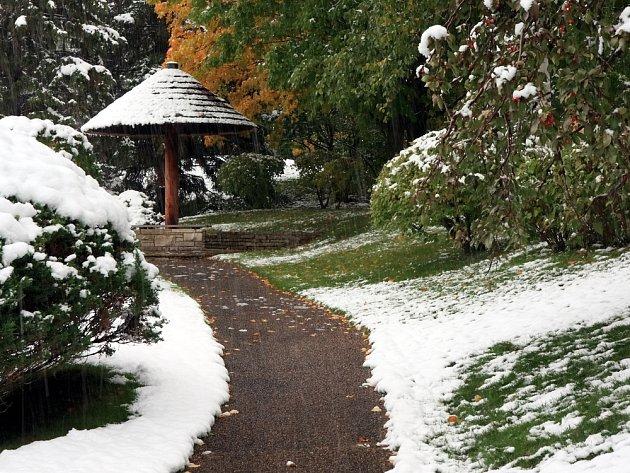 I zimní parky a zahrady mohou být okouzlující