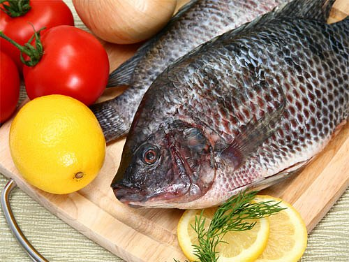 rybí maso je přirozeným zdrojem Q10