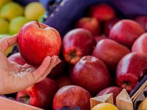 Jablka si při nákupu důkladně prohlédneme, zda nejsou mechanicky poškozená.