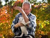 Kočičím škrábancům můžeme snadno předcházet.