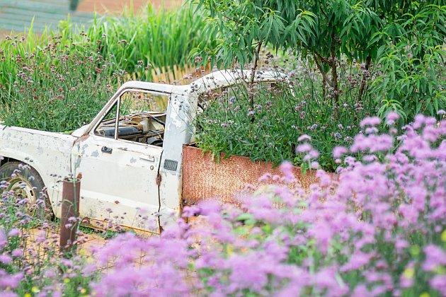 Auto jako zahradní doplněk? I takové zahrady najdete.
