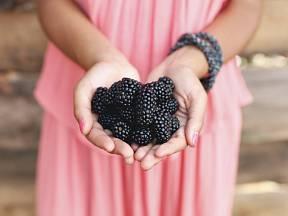 Nenechte si ostružiny ujít. Jsou plné zdraví prospěšných látek a vitamínů.