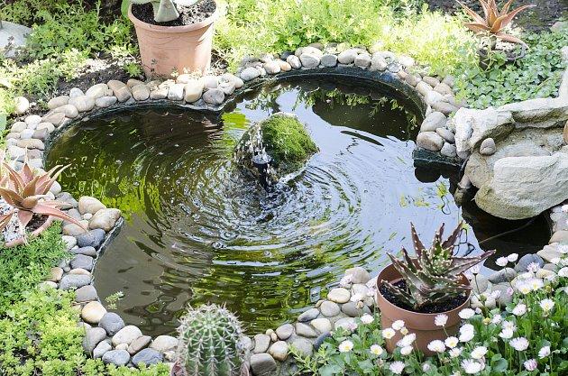 Při stavbě zahradního jezírka se vyhněte pravidelnosti.