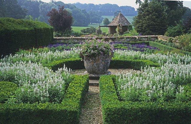 Záhony krásně olemuje nízký plůtek ze zimostrázu či cesmíny
