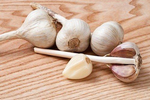 Navíc je česnek bohatý na fytoncidy, jako je allicin, který je vytvářen při drcení nebo mletí stroužků.