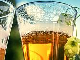 zvětralé pivo