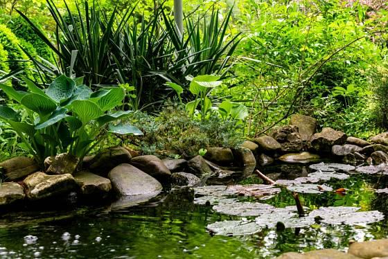 Dešťová zahrada je měkká a bez minerálů.