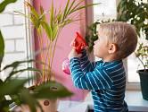 Některé pokojové květiny by mohly dětském pokoji nadělat více škody, než užitku.