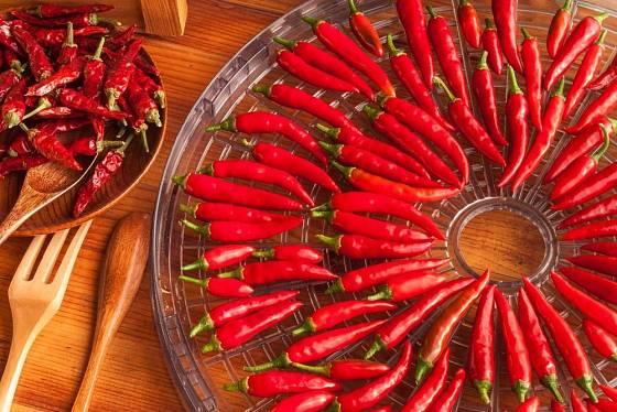 Drobné chilli papričky lze sušit i vcelku