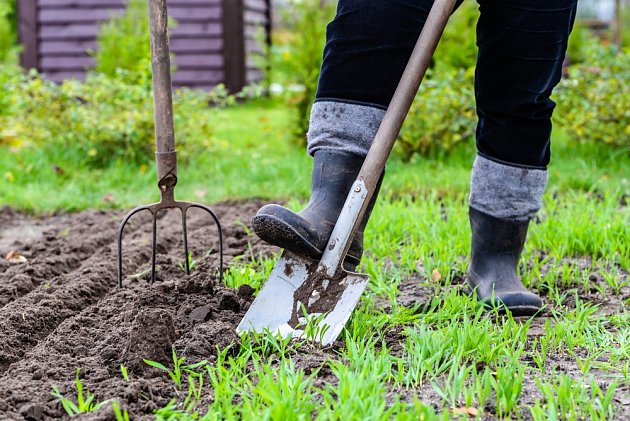 Krásná zahrada vyžaduje řádnou a pravidelnou péči a také dobré vybavení