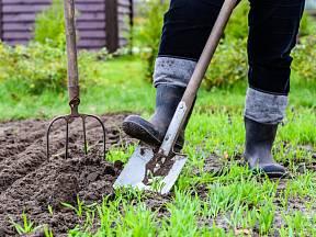 Jaká jste zahradnice/zahradník podle horoskopu?