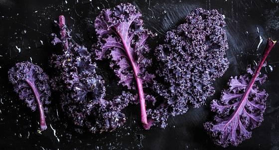Fialová odrůda kadeřávku ozdobí pokrmy