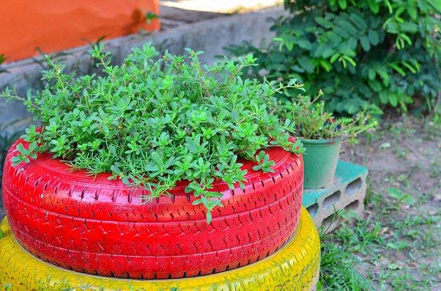 Takhle si gumy pamatujeme, když stály zakopané na dětském hřišti. Teď v nich roste květena.