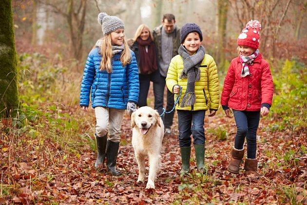 Včasná socializace má velmi pozitivní vliv na další život psa.