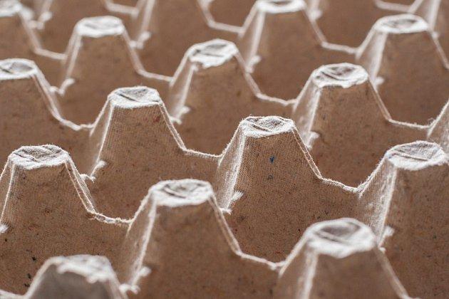 Tvořit můžeme i z papírového obalu na vejce.