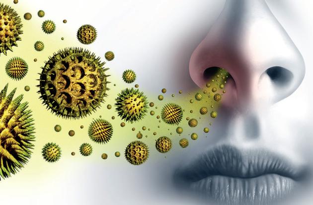 Každý alergik může být citlivý pouze na pyl z určité rostliny
