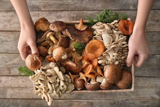 Úrodu hub můžete v kuchyni využít s pomocí mnoha nápaditých a lahodných receptů