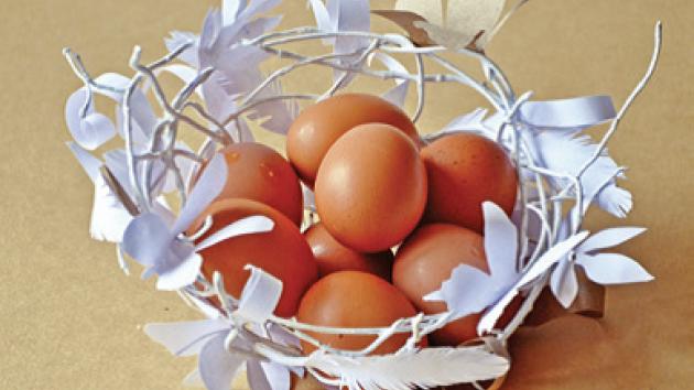 Papírový košíček na vejce připomíná ptačí hnízdo