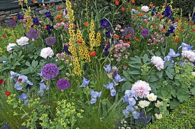 Pestrá výsadba okrasných i léčivých rostlin