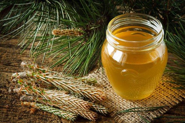 Z mladých výhonků jehličnanů a cukru vznikne léčivý sirup.