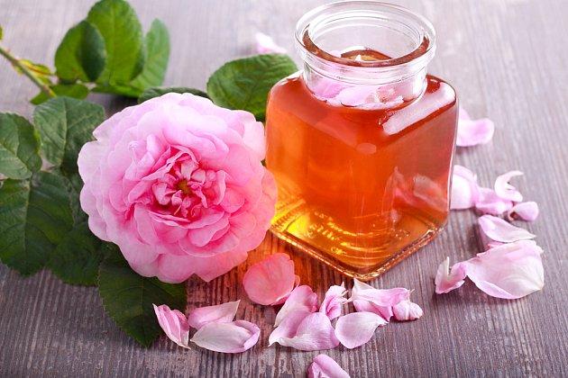 Růže stolistá má okouzlujcí vůni