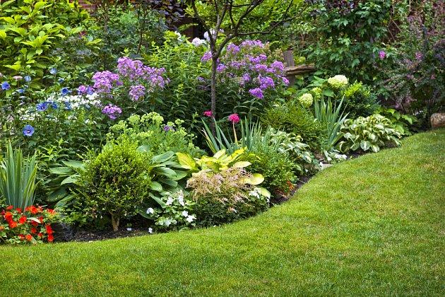 Dobře založený a udržovaný trávník je důležitou součástí okrasné zahrady.