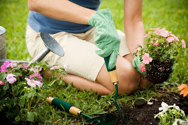 Líh je výborná dezinfekce zahradnického nářadí.