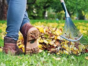 Nezapomeňte se o zahradu dobře postarat před příchodem zimy.