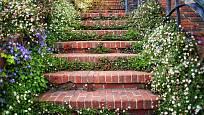 V zahradě skvěle vypadají cesty i schodiště ze starých cihel.