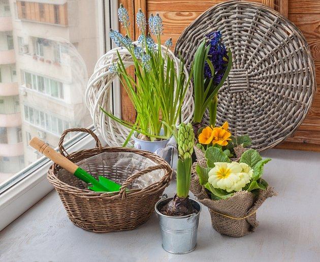Pro výsadbu rostlin je vhodné proutěné nádoby vyložit nepropustnou fólií.