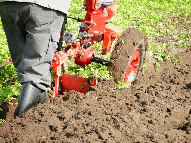 Zpracování zeleného hnojení