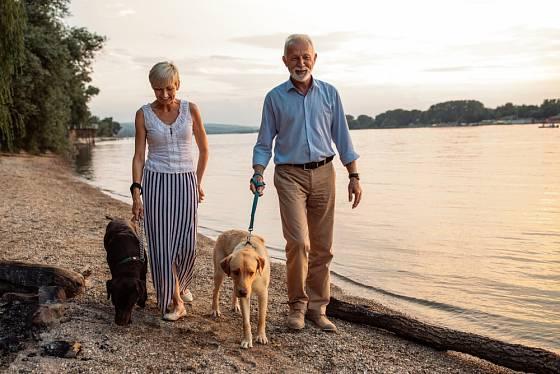 Příjemné procházky ve čtyřech si skvěle užijí obě strany.