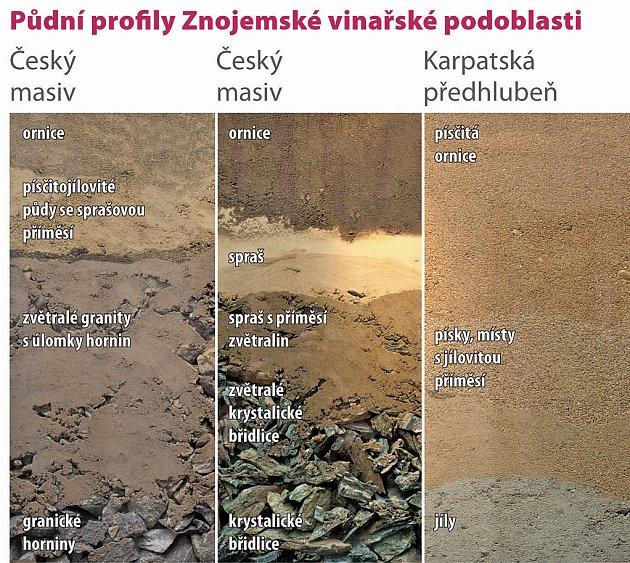 půdní profily Znojemské vinařské oblasti