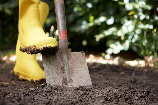 Rytí propsívá spíše těžké půdě, nežli lehké