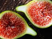 plody fíkovníku