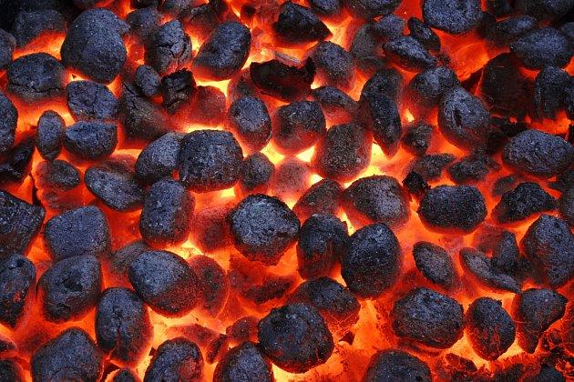 V dnešní době je velmi populární grilovat na dřevěném uhlí. S tímto popelem se kompostu vyhněte velkým obloukem.