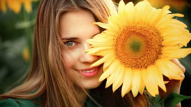 Vypěstujte si slunečnice v květináči, rozzáří balkón i verandu.