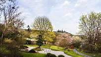 Pohled na jaro v japonské zahradě v pražské Troji.