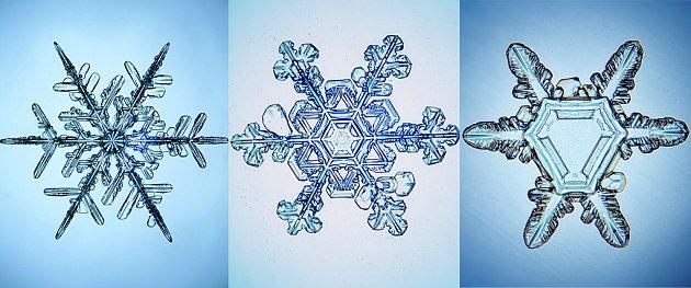 různé tvary sněhových vloček - pod mikroskopem