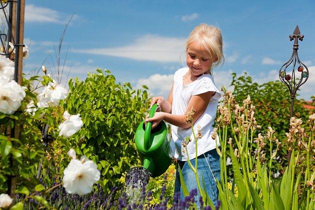 Voda z těstovin pomáhá zvýšit výnos plodin a posiluje kořenový systém.
