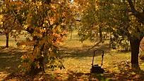 Podzimní úklid listí hráběmi si už nedokážeme představit.