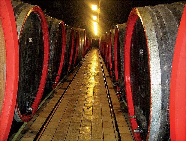 """Červené víno zraje v sudech s červeným čelem, bílé v sudech zelených, v moderních """"nerezech"""" už barv"""