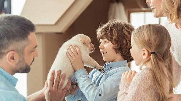 Příchod štěněte do rodiny má svá pravidla.